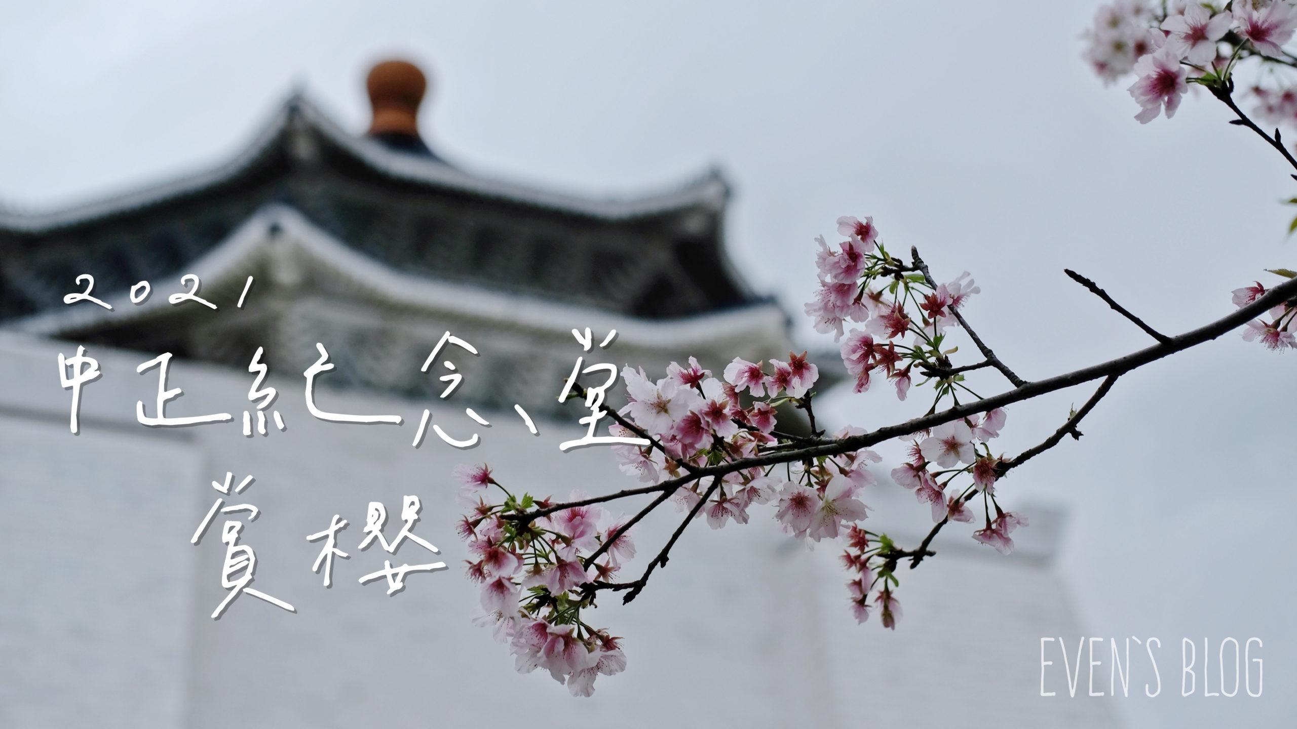 中正紀念堂櫻花, 台北櫻花, 台北賞櫻, 櫻花季