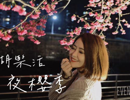 【賞櫻/台北】夜櫻超美~內湖樂活夜櫻季。2021.02.14花況♥
