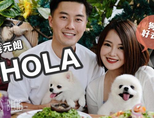 【香港】元朗寵物友善cafe-HOLA。假日帶毛孩一起brunch♥